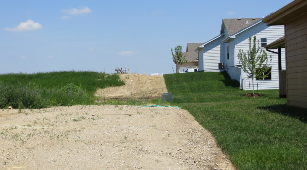 Above: sod is placed directly on top of compacted clay, no topsoil